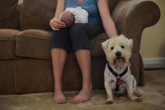 SugarSnaps Photographpy Newborn-16